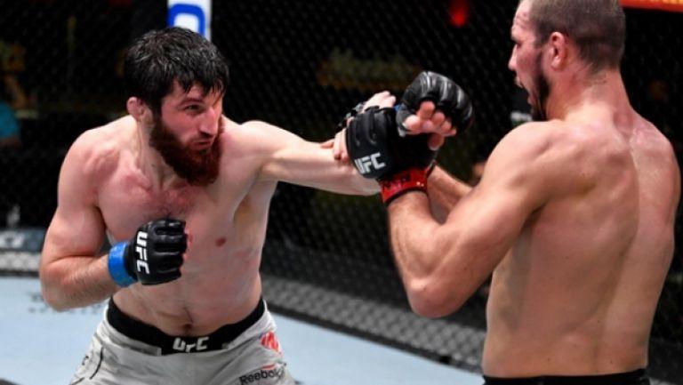 Магомед Анкалаев победи Никита Крилов на UFC Fight Night 186