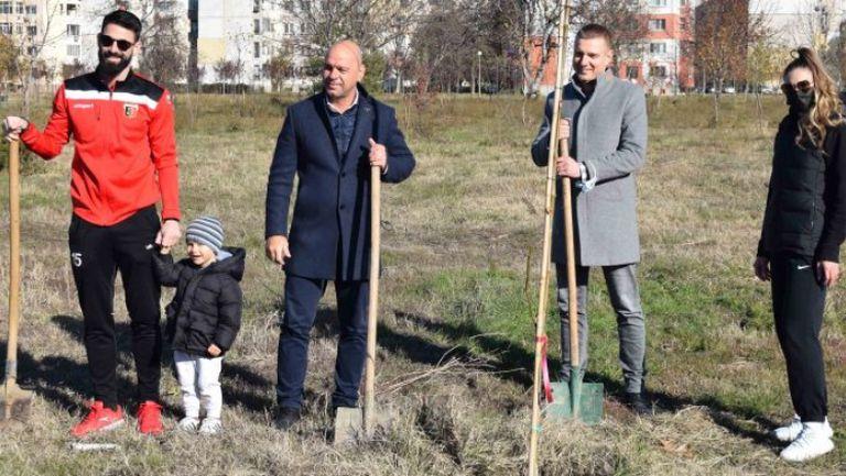 """Локо Пловдив с поредната добра кауза - засади 60 дръвчета в парк """"Лаута"""""""