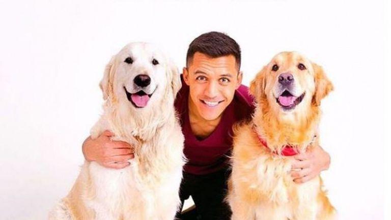 Изтече задължителната карантина в Интер - играчите вече могат да си разхождат кучетата