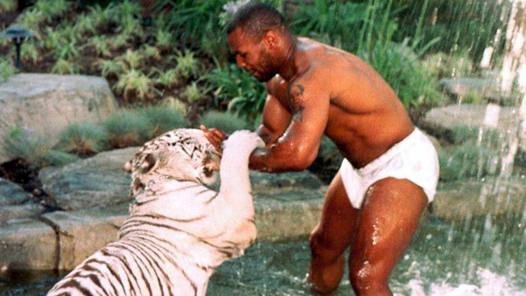 Щом си Майк Тайсън, не разхождаш куче в парка, а тигър